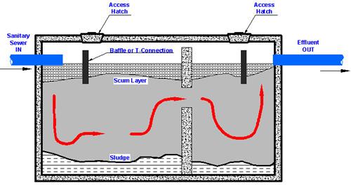 Bigg Dawg Nh Septic Systems Sewer Repairs Water Repairs